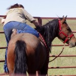 A woman steps from the corral panel over to sit on her new horse bareback